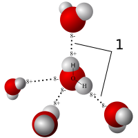 model of water molecules aligned in a position where hydrogen bonds form